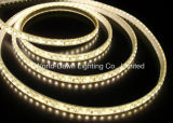 CE EMC LVD RoHS Two Years Warranty, High Lumen SMD3528 LED Strip Light (WDSMD3528-60)