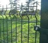 PVC Coated Curve Wire Mesh Fencing with ISO9001: 2008