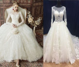 Long Sleeve Trendy Princess Gown for Bride