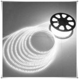 SMD5050 Waterproof LED Light Decoration in Rope Light