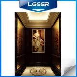 European Oil Painting Passenger Elevator