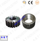 Made in China Pinion Gear of Pg-7