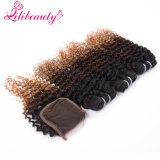 100% Human Hair Lace Closure Hair Closure with Bunldes in 1b/4/27