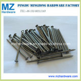 Bright Polished Round Common Construction Iron Wire Nail