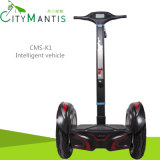 Electric Scooter/Balance Scooter/E-Bike/Self Balance Scooter/Two Wheel Scooter