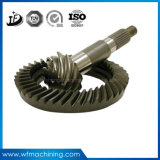 OEM/Customized Steel/Iron Machined Transmission Gears with Machining Service