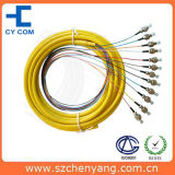 Fiber Optic Pigtail, 12 Core Ribbon Packing