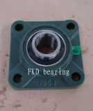 Pillow Block Bearing (UCF X06)