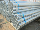 BS1387 Galvanized Steel Pipes
