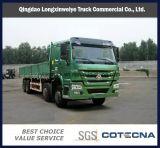 Sinotruk HOWO 6X4 30ton Cargo Lorry Truck