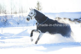 Cheap Winter Cotton Horse Rugs Wholesale Horse Products