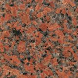 China Polished Maple Red G562 Granite Slabs/G562 Granite/Red Granite