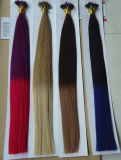 Reasonable Price Remy Top Quality Keratin U-Tip Human Hair Extension