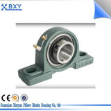 Chrome Steel UC Bearing Cast Iron Pillow Blocks UCP305, UCP309, UCP310, UCP311, UCP326