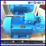 S3 Duty Tower Crane Three Phase Electric Motor 5.5kw