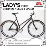 Coaster Brake 700c Fixed Gear Bike for Lacy (KB-700C18)
