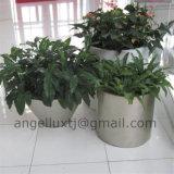 Best Quality Polish Brush Surface Garden Park Shopping Center Stainless Steel Planter Pot