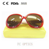 Sunglasses for Ladies Fashionable and Hot Selling with Case