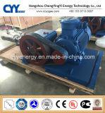Cyyp 67 Uninterrupted Service Large Flow and High Pressure LNG Liquid Oxygen Nitrogen Argon Multiseriate Piston Pump