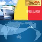 Competitive Ocean / Sea Freight to Belgium From China/Tianjin/Qingdao/Shanghai/Ningbo/Xiamen/Shenzhen/Guangzhou