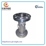 Invest Cast with Stainles Steel Casting