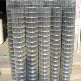 Hot Dipped Galvanized Welded Stainless Steel Mesh Fencing
