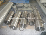 A182-F316L Forged/Forging Parts/Pipes/Tubes/Sleeves/Bushings (AISI 316L, UNS S31603, 1.4404, SUS 316L)