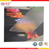 Under SGS Polycarbonate Abrasive Sheet (YM-HL-0007)