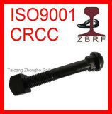 Carbon Steel Grade 8.8 Oval Neck Track Bolt Rail Fish Bolt for Turnouts