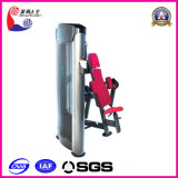 Biceps Curl Fitness Equipment (LK-9007)
