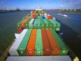 Shipping From Ningbo/China to Constanta Romania Logistics Service