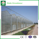 Polycarbonate Green House Hydroponics System for Vegetables