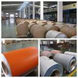 High Quality Color Coated Aluminum Coils with PE/PVDF/Feve/HDP Coating