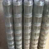 Stainless Steel Knotted Wire Mesh Fence