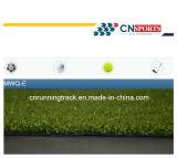 High Density Professional Artificial Grass for Hockey/Tennis/Football