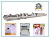 Xcs-800PC Prefolding Lock Bottom Folder Gluer for Pizza Box