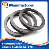 NBR FKM Tc Oil Seal for Motorcycle