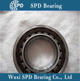 SKF Cylindrical Roller Bearing Nu2216ecp
