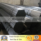 12 Meter Large Diameter Dn1000 Q235B SSAW Spiral Welded Carbon Steel Pipe