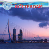 LCL Freight Forwarding to Rotterdam Holand Carrier Pil (shipping line)