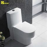 Bathroom Two Piece Sanitary Ware in Toilet (EDA66153)