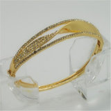 2014 Newest Jewellery Fashion Jewelry Bangles (BB04989B1S0032)