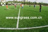 50mm Sports Football Artificial Grass (SUNJ-AL00008)