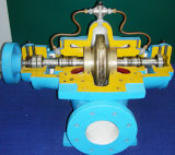 Single Stage Double Suction Split Casing Pump, Water Pump