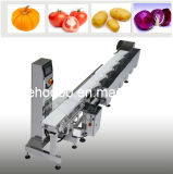 Weight Sorting Conveyor Scales From Shanghai