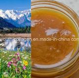 Top Honey, 100%Natural Organic Chinese Herbal Medicine Honey, Wild/Soil Honey, Ripe Honey, No Antibiotics, No Pesticides, No Pathogenic Bacteria, Health Food