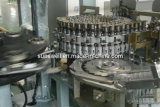 SSW-R10 Automatic Rotary Blow Molding Machine