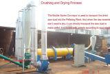 Best Seller Steam Rotary Dryer