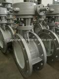 Dn250 Pn16 Cast Steel Bi-Direction Sealing Butterfly Valve (D343H-DN250-16C)