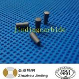 Yg8 Carbide Nail for Tire